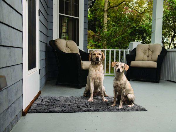 Dog Gone Smart Doormat