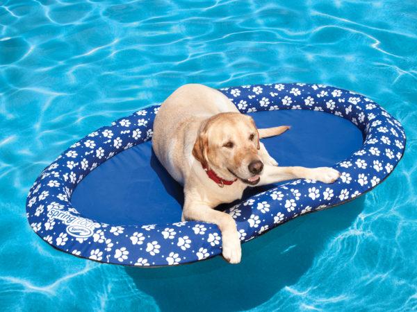Paddle Paws Dog Pool Float