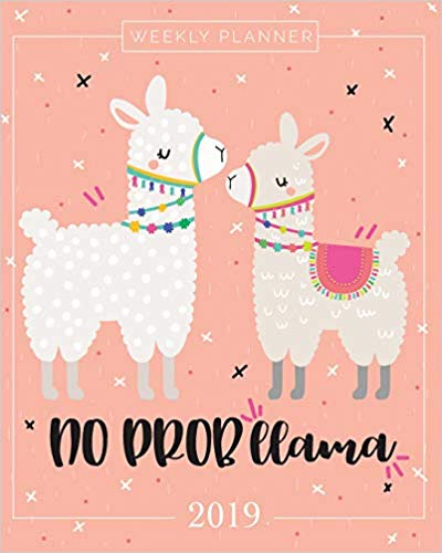 2019 Planner Weekly And Monthly: Calendar Schedule + Organizer | Inspirational Quotes And Llama Lettering Cover