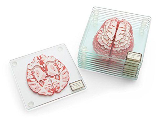 Anatomic Brain Specimen Coasters (Set of 10 pieces)