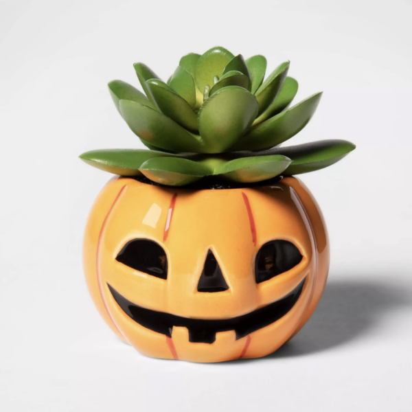 Pumpkin Halloween Succulent - Hyde & EEK! Boutique™