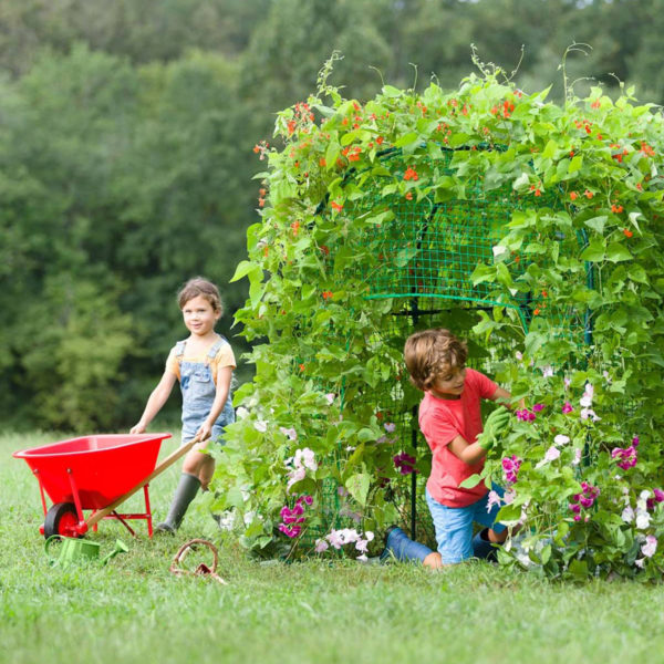 Grow With Me™ Garden Fort with Seeds