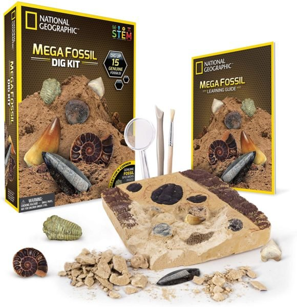 National Geographic Dig Kit