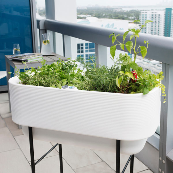 Nest Self Watering Planter