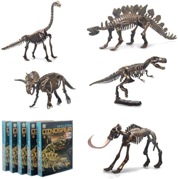 5 Different Dinosaur Skeleton Puzzles