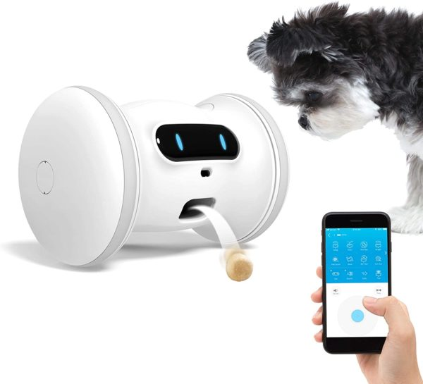Pet Fitness Robot: Interactive Treat Dispenser and Companion