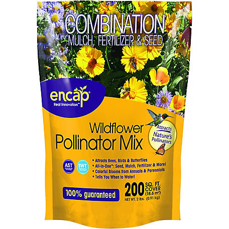 Encap Wildflower Pollinator Mix, 2 lb