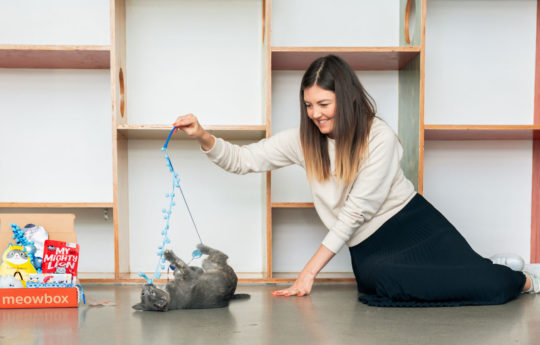 The Ultimate First-Time Cat Owner Guide