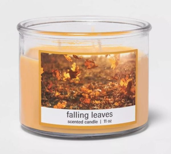 Target 3-Wick Falling Leaves Candle