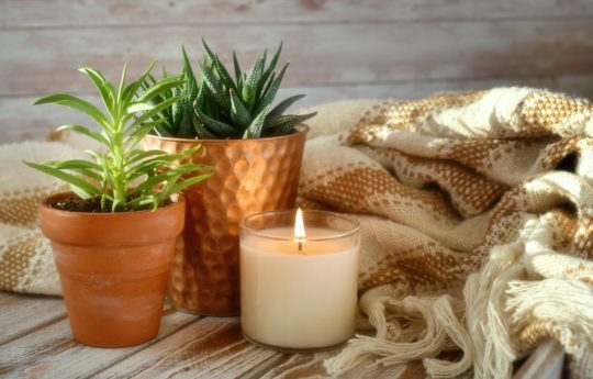 13 Best Soy Candles to Keep Things Cozy at Home