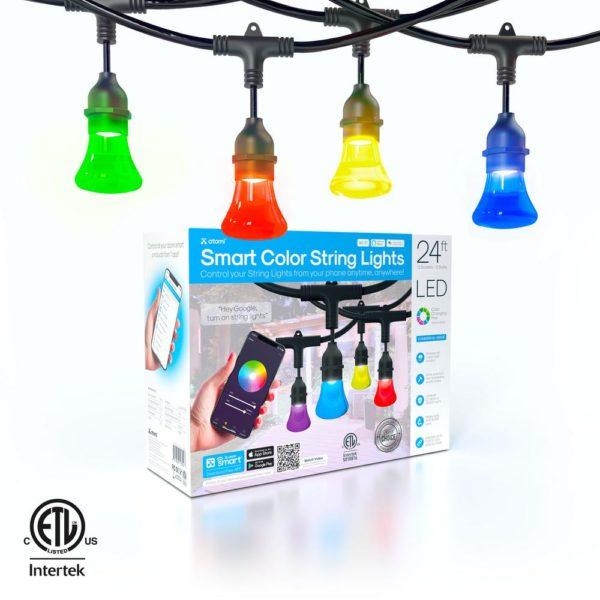WiFi Smart Color String Lights, 24 Feet