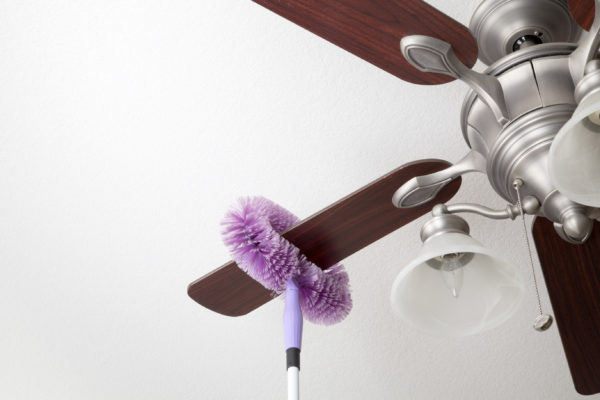 Microfiber Duster with Extension Pole