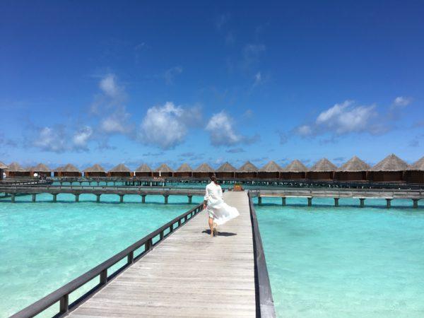 Zola Honeymoon & Cash Funds