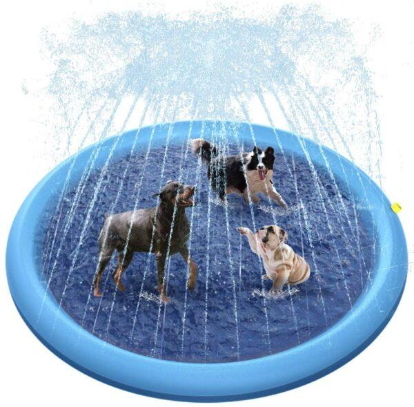 Raxurt Dog Pool